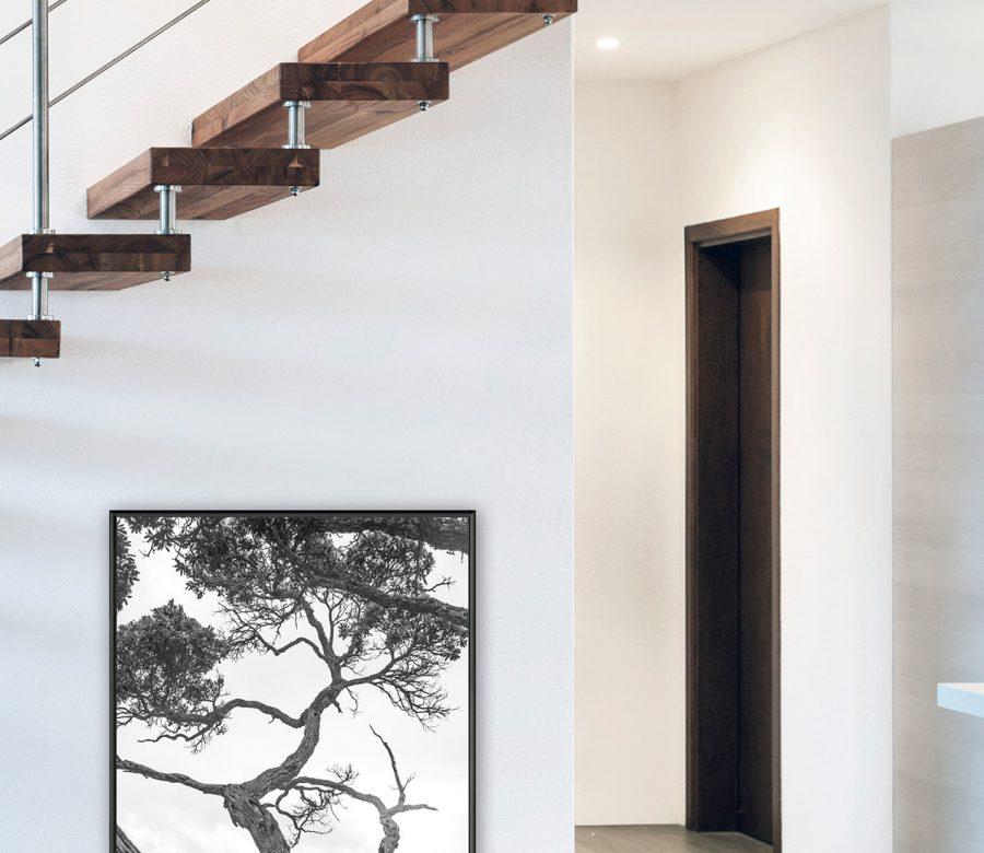 C2-kader-met-boom-onder-trap